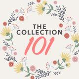 thecollection101