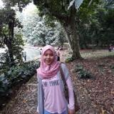 rosa26