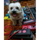 topham_pedals