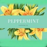 peppermintclothing
