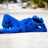 cookiemonster1406