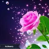 nubeauty1688