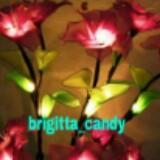 brigitta_candy