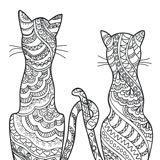 envycats_