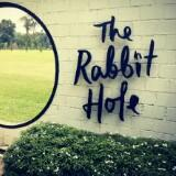 rabbit_holez