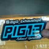 pig13_exhaust