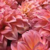 floralwreathsandmore