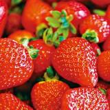 w.strawberry