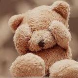 teddybear.sg
