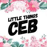 littlethingsceb