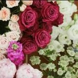 flowerandhamper