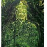 oakforest