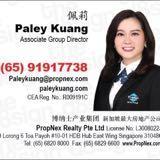 paleysingapore