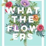 whattheflowers_sg