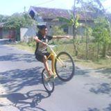 robin119