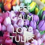 lovelytulips