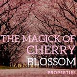 cherry_blossom_magick