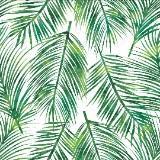 coconut.green