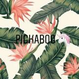 pickaboo.co