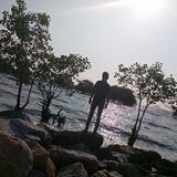 amli_95