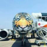 tigerair8888