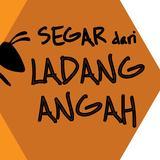 ladang_angah
