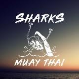 sharksmuaythai