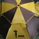 umbrellasister
