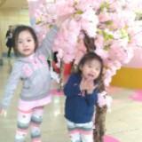 cherrywongcm