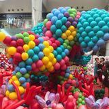 colorfulpony
