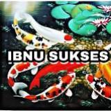 ibnu_borneo