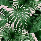 palmdreamslove