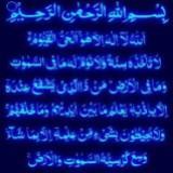 teh_habibah