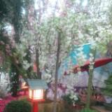 florencepang