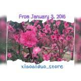 xiaoaiduo_store