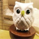 lovely_owl