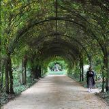 ann16beauty