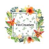 vin.creation