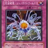 ygocard01