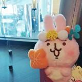 cherrywong_hk