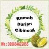 rumah_durian