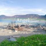 angel_zhii