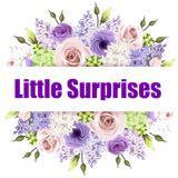 littlesurprises