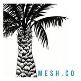 mesh.co