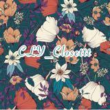 cly_closettt