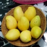thuzashwe