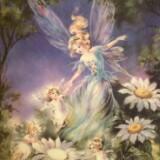 fairieslights