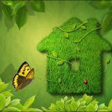 beautygreen