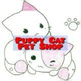 puppycatpetshop