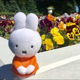 miffy_wardrobe